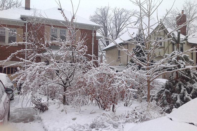 winter-exterior2